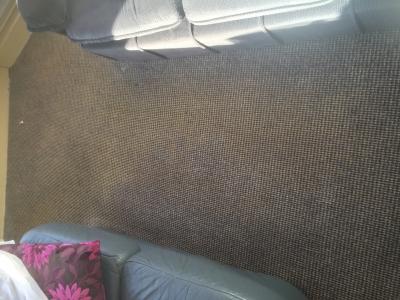 Cleaned carpet